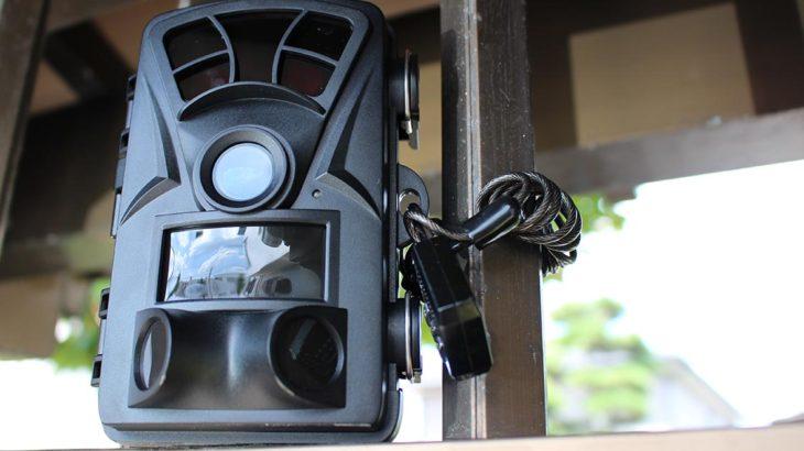トレイルカメラの設置方法、実際に設置してみました。